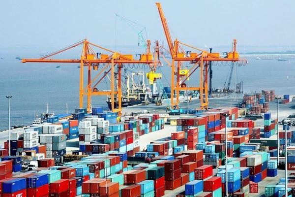 Dịch vụ xuất nhập khẩu 2019 của V-Link
