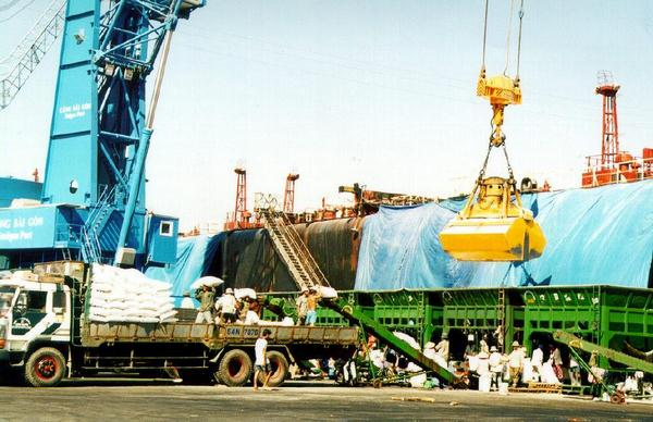 Dịch vụ xuất nhập khẩu V-link Logistics Co.,Ltd chuyên nghiệp, nhanh chóng