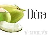 Thủ tục xuất khẩu dừa tươi, cơm dừa